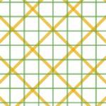 línies geomagnètiques